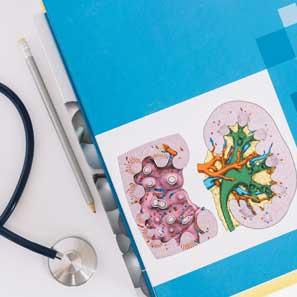 انواع رژیم غذایی کبد سالم